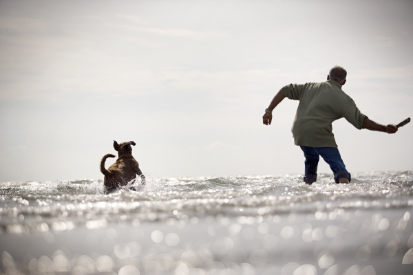 Mann mit Hund am Strand. Erickson Stock Kollektion.