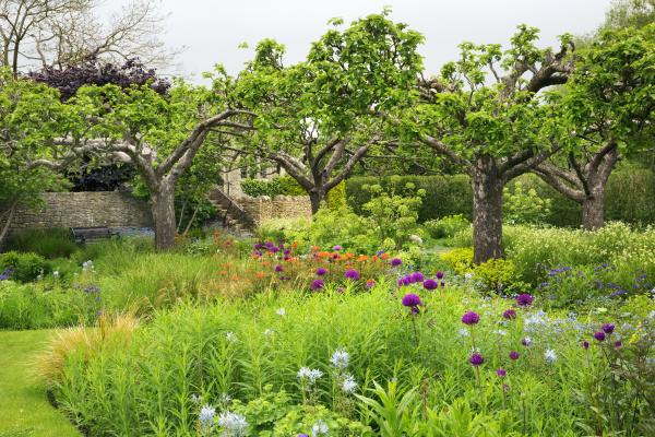 Bild eines grünen Gartens von Mint Images