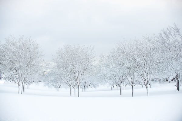 Winter Impression by Aurora Photos