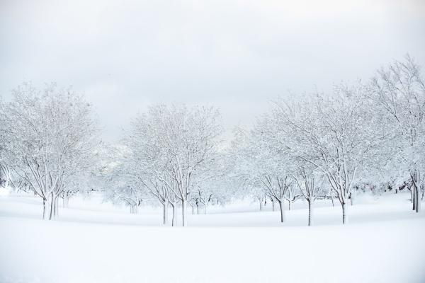 Winter Impression von Aurora Photos