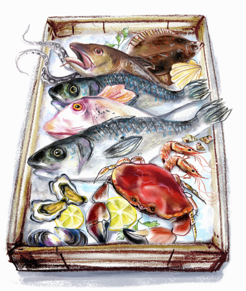 Illustration, Fish, seafood, crab, plaice, shellfish, mussles, tray