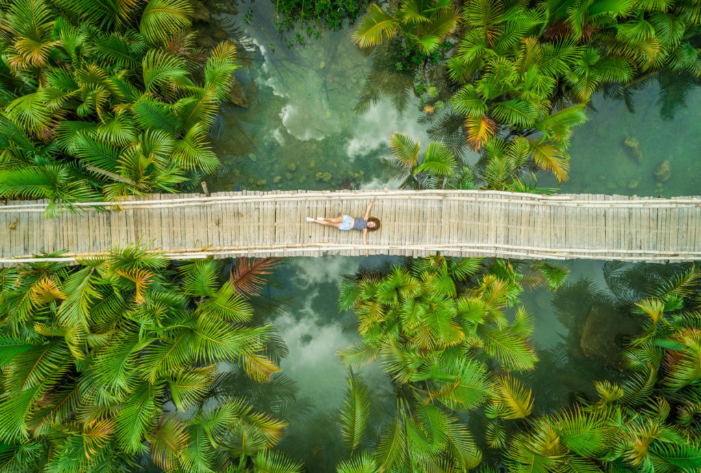 bridge, park, palms, palm trees, jungle, relax, meditate, Model Release, Modelfreigabe, bird's eye view, aerial image, drone photography, royalty free