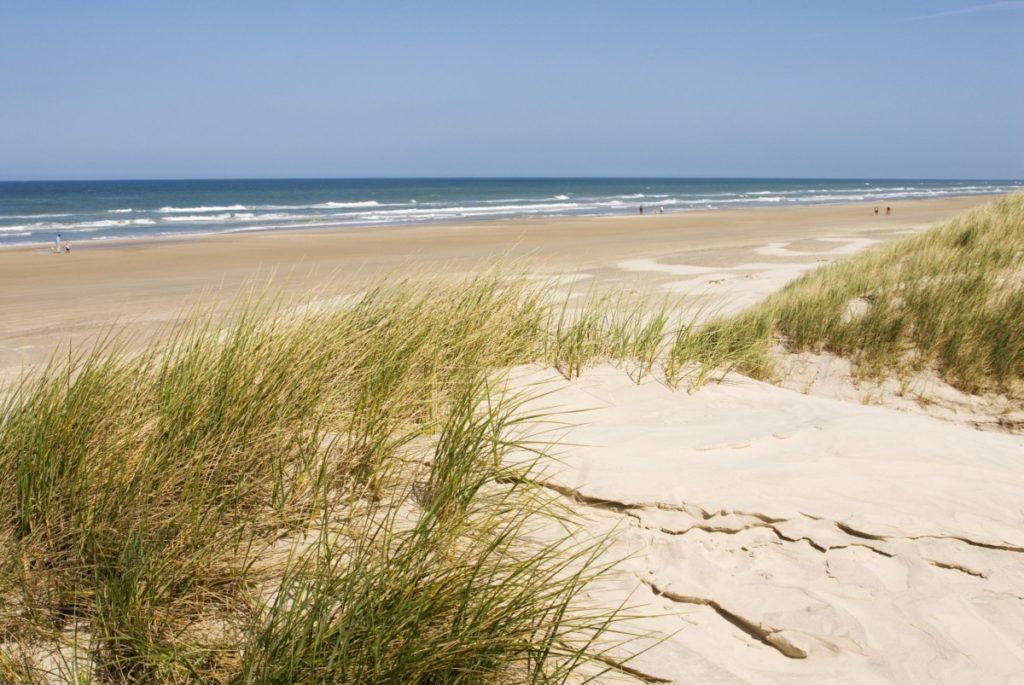 strand dänemark meer wellen sonne lizenzfrei fotos bilder