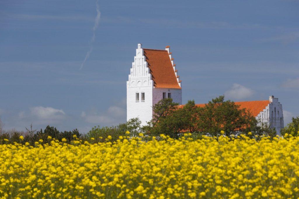 Kirche Mön Dänemark Raps