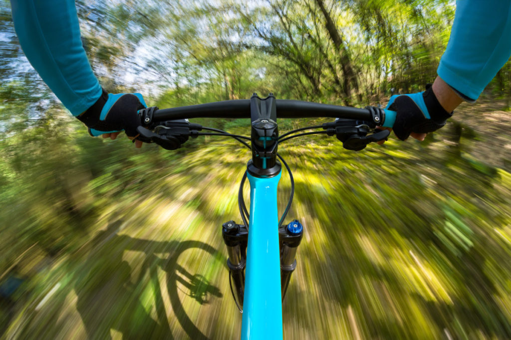 bicycle, fast, rush, forest trees, race, royalty free photo