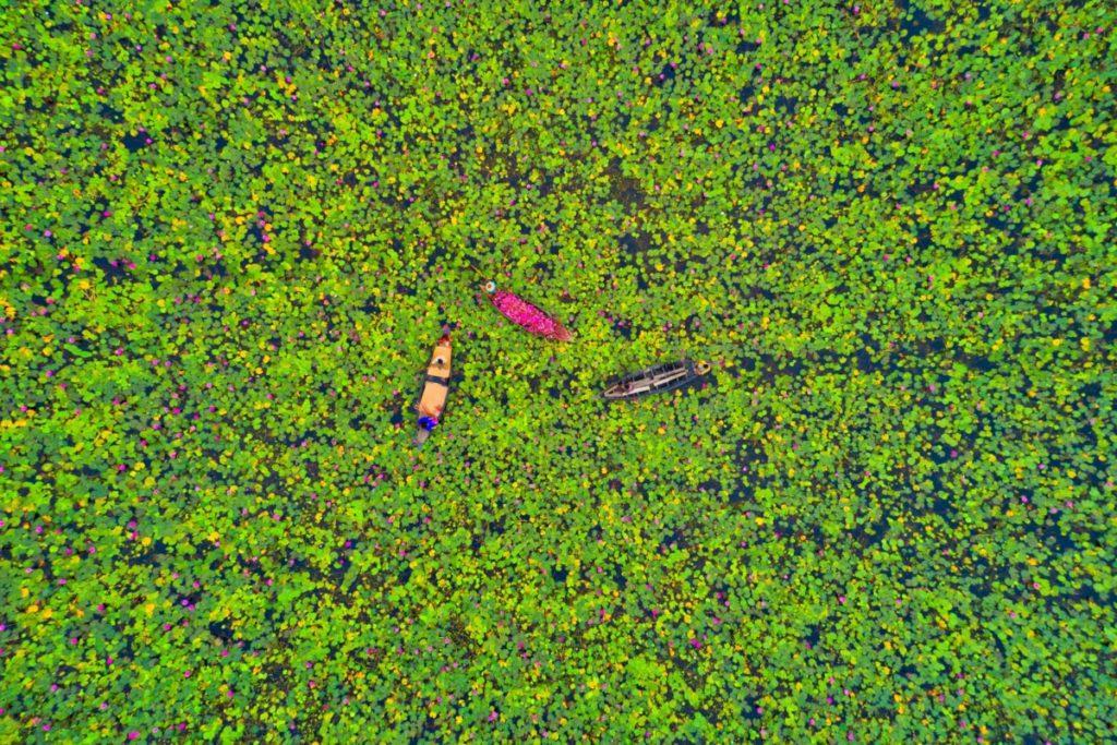 Inspiration Natur lagune boote bangladesch lizenzfreie Bilder panthermedia